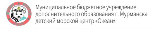 dmc-ocean.com.ru